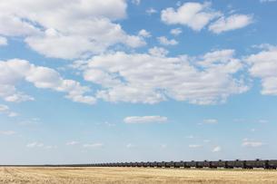 Oil train cars and fallow farmland, near Swift Current, Saskatchewan, Canada.の写真素材 [FYI02265567]