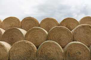 Stacked hay bales after the harvest, winter fodder for animals..の写真素材 [FYI02265626]