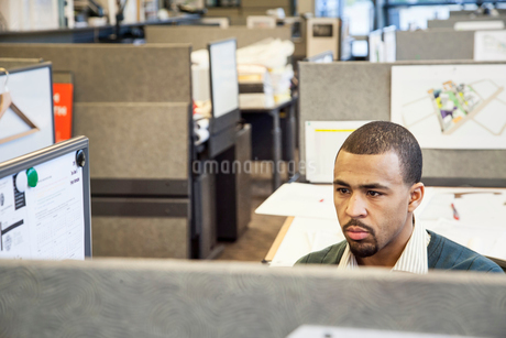 A Black man working in his cubicle in an corporate office.の写真素材 [FYI02265633]