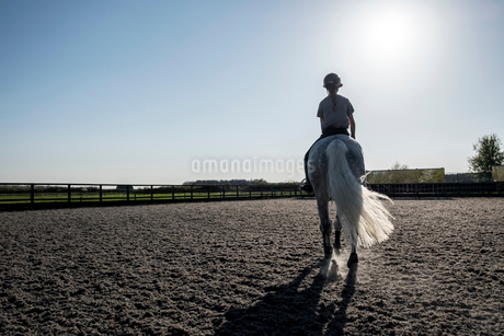Rear view of teenage girl riding a grey horse in a paddock.の写真素材 [FYI02265682]