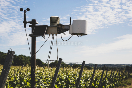 Close up of weather station on a vineyard.の写真素材 [FYI02265691]