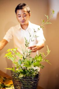 Japanese man standing in flower gallery, working on Ikebana arrangement.の写真素材 [FYI02265694]