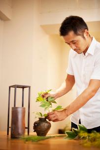 Japanese man working in a flower gallery, working on Ikebana arrangement.の写真素材 [FYI02265704]