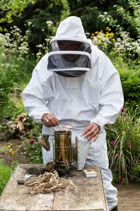 Beekeeper wearing protective suit at work, lighting fire in metal smoker to calm bees.の写真素材 [FYI02265715]
