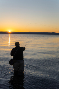 A silhouette view of a fly fisherman casting for salmon and searun coastal cutthroat trout from a saの写真素材 [FYI02265717]