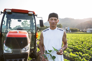 Japanese farmer standing in front of red tractor in a soy bean field, looking at camera.の写真素材 [FYI02265767]