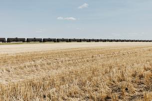 Oil train cars and fallow farmland, near Swift Current, Saskatchewan, Canada.の写真素材 [FYI02265768]