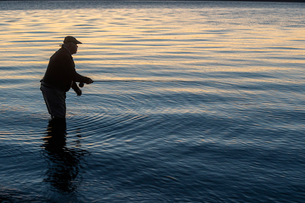 A silhouette of a fly fisherman casting at sunrise for searun coastal cutthroat trout on a beach onの写真素材 [FYI02265779]