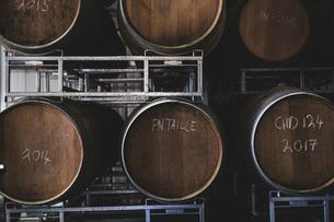 Oak wine barrels in a winery.の写真素材 [FYI02265783]