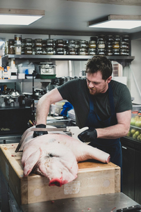 Male butcher wearing apron and black rubber gloves cutting pig's carcass on butcher's block.の写真素材 [FYI02265790]
