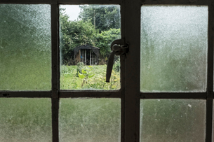 Close up of window with broken pane, view of overgrown garden with shed in the distance.の写真素材 [FYI02265852]