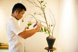 Japanese man standing in flower gallery, working on Ikebana arrangement.の写真素材 [FYI02265857]