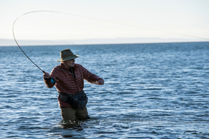 A Caucasian male fly fisherman casts for searun coastal cutthroat trout and salmon in salt water offの写真素材 [FYI02265897]