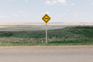 Arrow intersection sign and rural farmland,の写真素材 [FYI02265926]