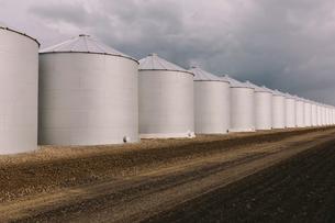 Rows of grain silos, stormy skies in distance, Saskatchewan, Canada.の写真素材 [FYI02266120]
