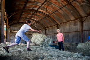 Two farmers stacking hay bales in a barn.の写真素材 [FYI02266142]