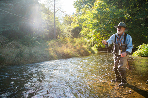 A fly fisherman casting for trout in a small freestone river in northeastern USA.の写真素材 [FYI02266143]