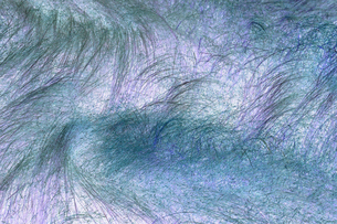Inverted image of wild summer grasses and meadow from above, abstract of colour and windswept grasseの写真素材 [FYI02266149]