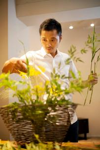 Japanese man standing in flower gallery, working on Ikebana arrangement.の写真素材 [FYI02266183]