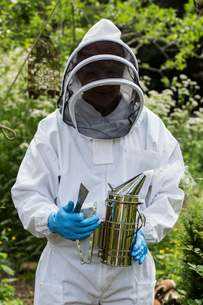Beekeeper wearing protective suit at work, holding metal smoker to calm bees.の写真素材 [FYI02266235]