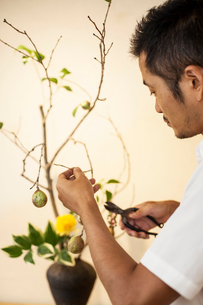 Japanese man working in a flower gallery, working on Ikebana arrangement, using secateurs.の写真素材 [FYI02266293]