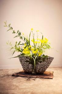 Close up of Ikebana arrangement with yellow flowers in brown basket.の写真素材 [FYI02266300]