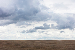 Storm clouds over barren farmland, Saskatchewan, Canada.の写真素材 [FYI02266321]