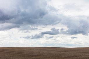 Storm clouds over barren farmland, Saskatchewan, Canada.の写真素材 [FYI02266321]