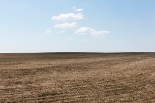 Fallow farmland, horizon and sky, near Dollard, Saskatchewan, Canada.の写真素材 [FYI02266401]