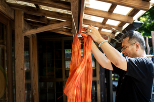 Japanese man standing outside a textile plant dye workshop, hanging up freshly dyed bright orange faの写真素材 [FYI02266410]