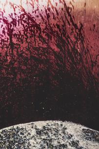 Close up of splatter of fermented black grape juice on wall of oak barrel.の写真素材 [FYI02266418]