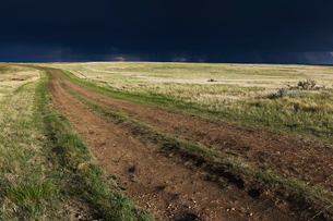 Dark storm clouds of over Grasslands National Park, Saskatchewan, Canada.の写真素材 [FYI02266475]