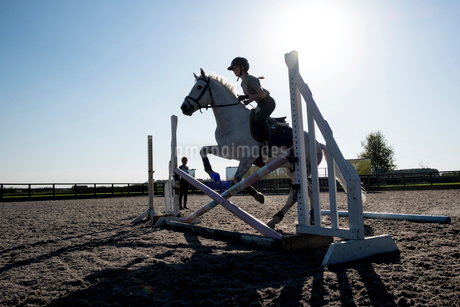 Silhouette of female rider jumping hurdle in a paddock on a grey horseの写真素材 [FYI02266540]