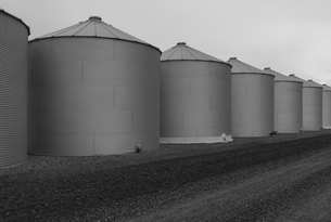 Rows of grain silos, stormy skies in distance, Saskatchewan, Canada.の写真素材 [FYI02266568]