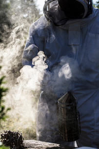 Beekeeper wearing protective suit at work, using smoker to calm bees.の写真素材 [FYI02266575]