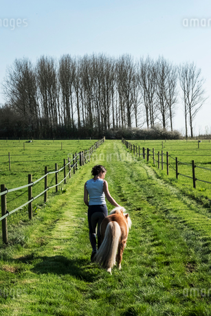 Rear view of woman leading a small brown Shetland brown pony down a paddock along a fence.の写真素材 [FYI02266589]