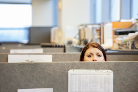 A young Caucasian woman looking concerned over the top of her cubicle in a corporate office.の写真素材 [FYI02266597]