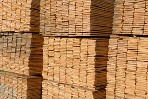 Piles of cut lumber in a timber yardの写真素材 [FYI02266607]