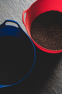 High angle close up freshly roasted coffee beans in blue and red buckets..の写真素材 [FYI02266659]