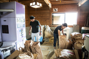 Japanese farmer and woman working indoors, filling brown paper sacks.の写真素材 [FYI02266733]