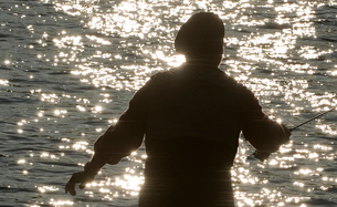 Silhouette of a fly fisherman casting on a river for troutの写真素材 [FYI02266804]