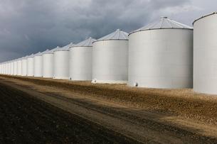 Rows of grain silos, stormy skies in distance, Saskatchewan, Canada.の写真素材 [FYI02266843]