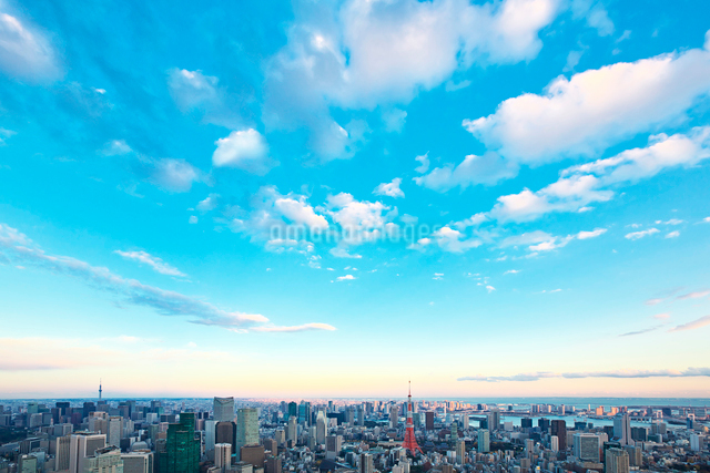 東京タワーと都心の街並の写真素材 [FYI02267673]