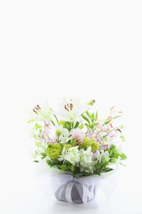 供花の写真素材 [FYI02267915]