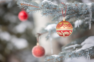 Christmas ornaments hanging from treeの写真素材 [FYI02268883]