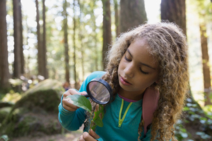 Girl with magnifying glass examining plant leafの写真素材 [FYI02270389]