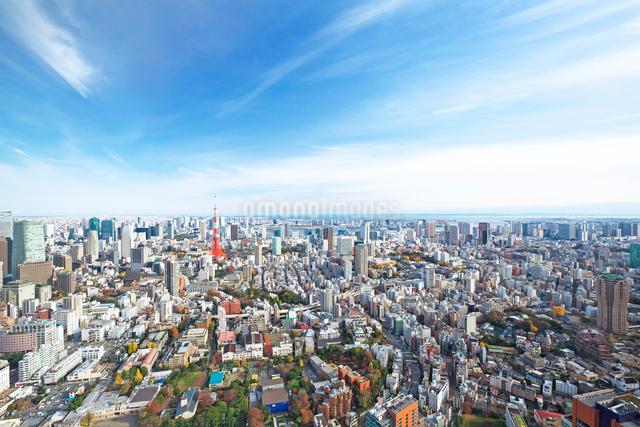 東京タワーと都心の街並の写真素材 [FYI02270726]