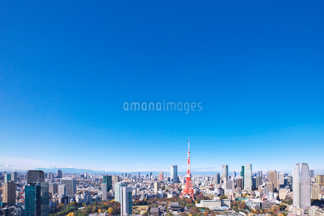 東京タワーと都心の街並の写真素材 [FYI02270762]
