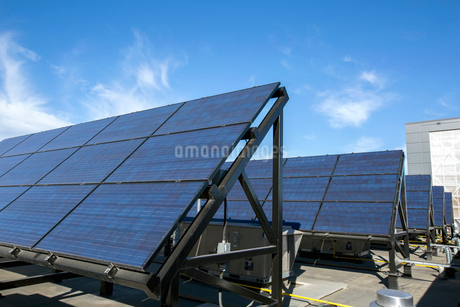 Solar panels in a rowの写真素材 [FYI02272729]