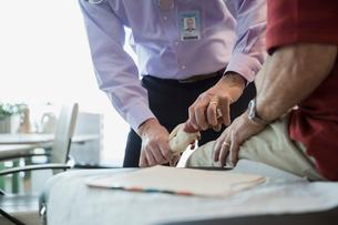 Doctor holding bone model to senior patients kneeの写真素材 [FYI02274302]